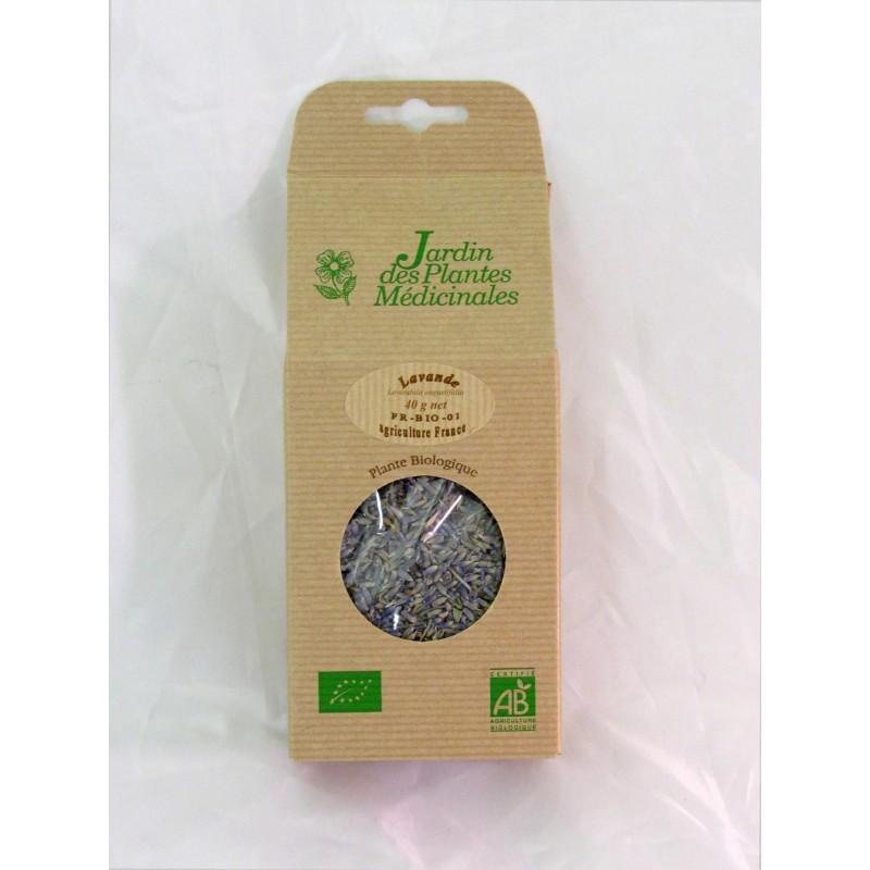 Lavande BIO (lavandula angustifolia)